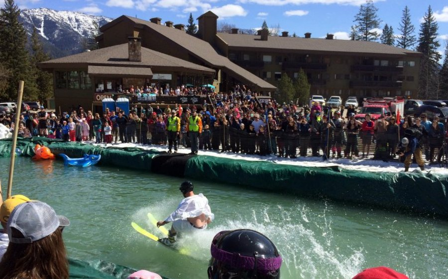 Griz Guide March 1/17 – Griz Days 2017 & a Fernie Spring