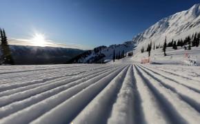 Fernival & Spring Ski Specials